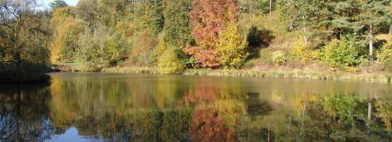 Le parc d partemental des c tes de montbron conseil for Parc naturel yvelines
