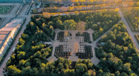 La renaissance du bosquet de la Reine à Versailles