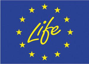 logo life+
