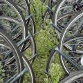 Des places pour les vélos à la mairie