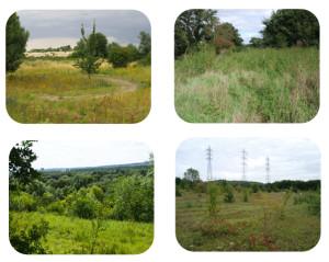 Quatre sites de compensation situés au cœur de la vallée de la  Seine
