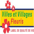 logo-CNVVF_base-line_coul