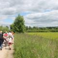 Vert les Yvelines randonnee pedestre 002