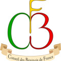 logo_CBF_contourNoir