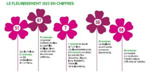 Infographie Chiffres VVF