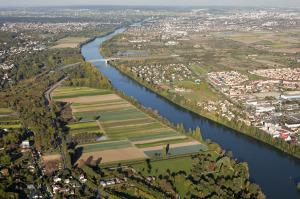 Zone de maraîchage au Mesnil-le-Roi.
