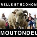 20160928-transhumance-magny-les-hameaux