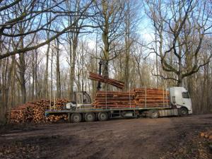 Débardage du bois par un grumier