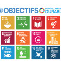 Sustainable Development Goals_E_Final sizes