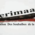 terimaayo