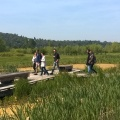 Aménagement écologique au Parc du Peuple de l'herbe