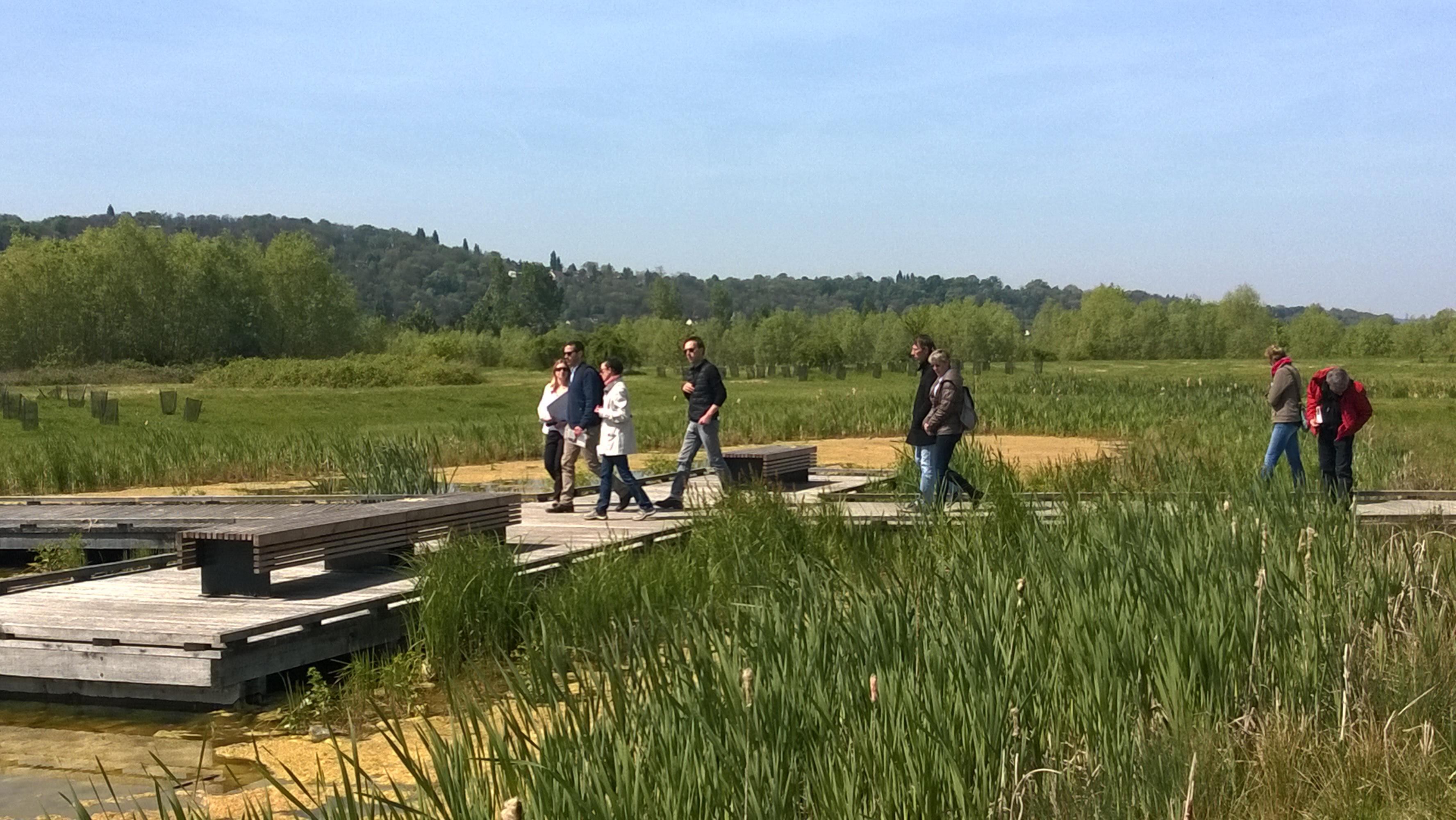 Visite d cou verte en yvelines au parc du peuple de l for Parc yvelines visiter
