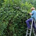 jardinier 2